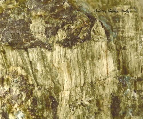 Carfolita<br />Biesenrode (Mansfeld), Distrito Mansfeld-Südharz, Harz, Sajonia-Anhalt/Sachsen-Anhalt, Alemania<br />Encuadre de la fotografía 27 mm.<br /> (Autor: Rafael Galiana)