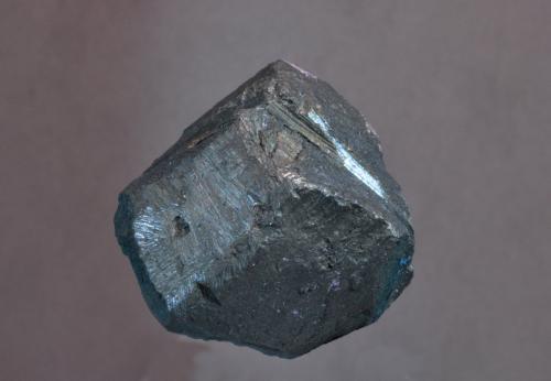 Calcosina<br />Mina Bristol Copper , Bristol, Hartford Company, Connecticut, USA<br />3 x 3 cm<br /> (Autor: Ricardo Fimia)