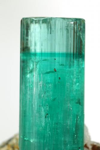 Beryl (variety emerald), Albite (variety cleavelandite), Pyrite<br />Chivor mining district, Palo Arañado Mine, Municipio Chivor, Eastern Emerald Belt, Boyacá Department, Colombia<br />crystal=45mm<br /> (Author: Fiebre Verde)