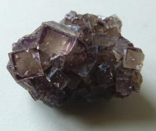 Fluorite<br />Seata Mine, Aysgarth, Wensleydale, North Pennines Orefield, Yorkshire, England / United Kingdom<br />4cm<br /> (Author: colin robinson)