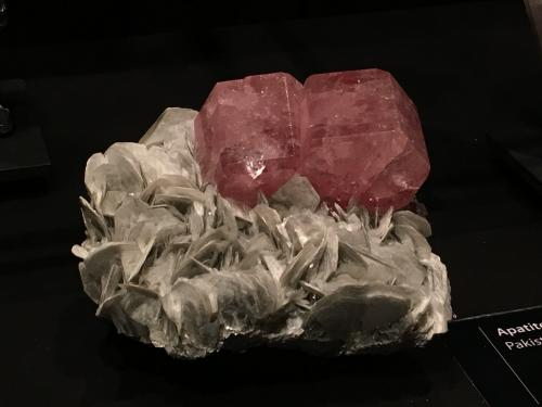 Apatite on Muscovite from Pakistan (Author: Fiebre Verde)