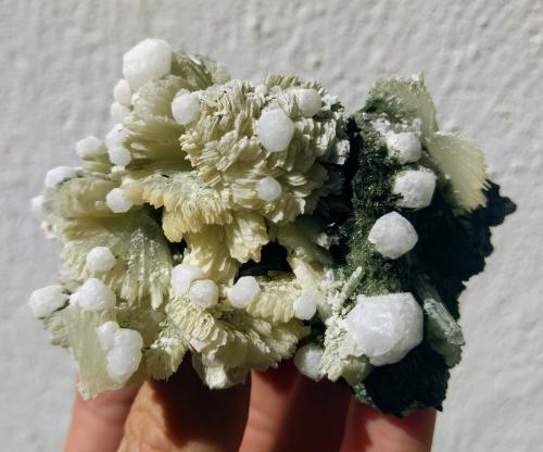 Prehnita, Actinolita, Analcima<br />Zona Imilchil, Anti-Atlas, Provincia Er Rachidia, Región Drâa-Tafilalet, Marruecos<br />8,5 x 6,5 cm.<br /> (Autor: Carles)