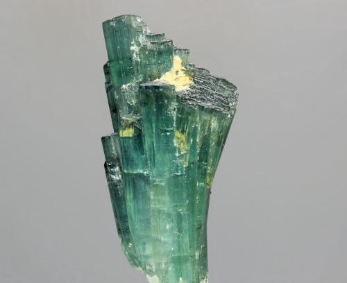 Elbaita (variedad indicolita)<br />Lavra Pirineus, Monte Belo, Itinga, Jequitinhonha, Minas Gerais, Brasil<br />cristal 20x45 mm<br /> (Autor: Ramon A  Lopez Garcia)