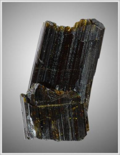 Epidote - Knappenwand - found on my own - Size: about 3.2 cm x 2.5 cm x 0.5 cm (Author: jaysminerals)
