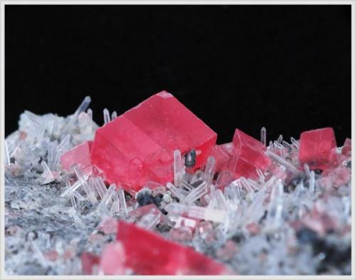 Rhodochrosite with Quartz - Sweet Home Mine - Colorado - Crystalsize 0.7 cm (Author: jaysminerals)