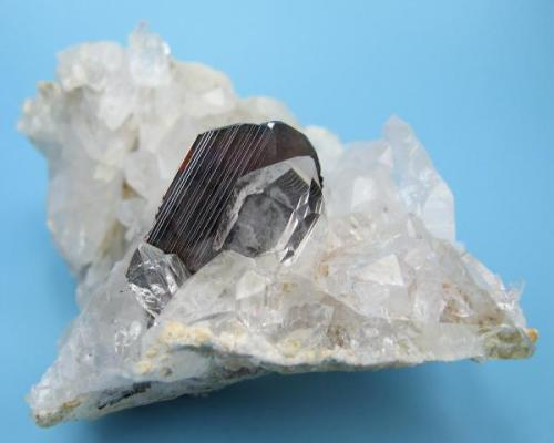 Brookite, quartz Zard Mts., Raskoh Mts., Balochistan, Pakistan 81 mm x 60 mm (Author: Carles Millan)