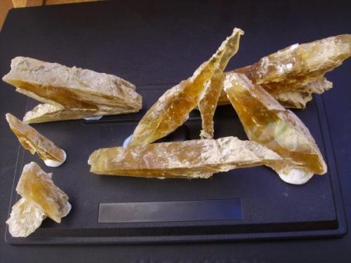 Gypsum crystals from Galera. Granada. Spain. The whole set. (Author: Antonio Alcaide)