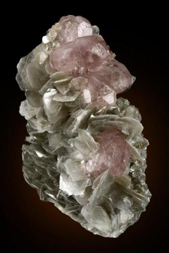 Apatite on Muscovite  Mt. Xuebaoding Pingwu County, Mianyang Prefecture, Sichuan Province China 9.2 x 5.5 x 3.3 cm (Author: GneissWare)