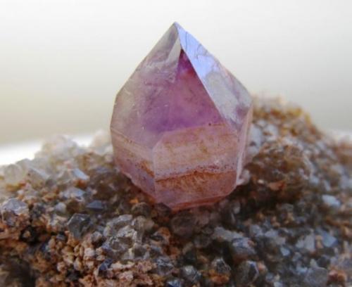 Amatista. Oblast. Kazakhstan. Cristal 15 mm. (Autor: Jose Luis Otero)