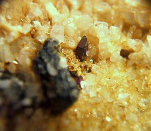 anatasa macael almeria 3mm.jpg (Autor: Nieves)