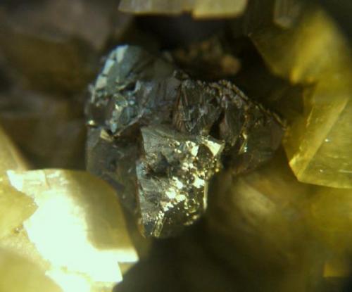 calcopirita mina troya guipuzkoa cristal de 1cm.jpg (Autor: Nieves)