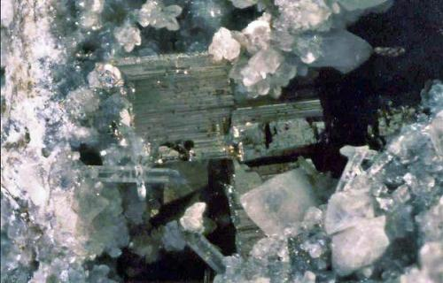 Krennerita c/cuarzo. Cripple Creek, Teller Co., Colorado, EE.UU. Cristales hasta 2,5 mm.  Col. Nacho Gaspar, Foto M. de Torres. (Autor: Nacho)