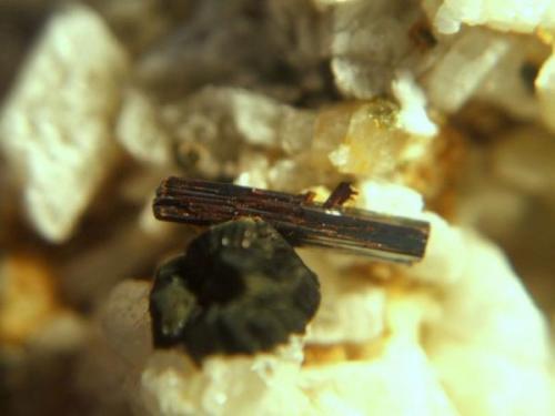 rutilo macael almeria cristal de 7mm.jpg (Autor: Nieves)