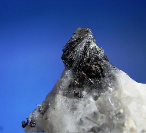 Grupo de cristales de polidimita pseudomorfica de millerita en calcita.1999.JPG (Autor: DAni)