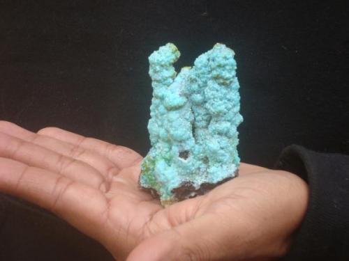 Estalactitas de goethita cubiertas por crisocola, mina San Antonio el Grande, Chihuahua, México (Autor: javmex2)