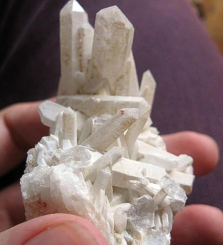 Cuarzo, Marciñeira, Pontes de García Rodríguez, A Coruña. Cristal mayor 5 cm. (Autor: usoz)