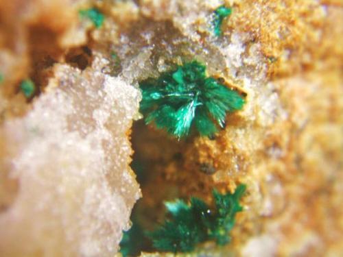 Malaquita mina Sol Rodalquilar, Almeria, Andalucía, España. encuadre 1 cm (Autor: Nieves)