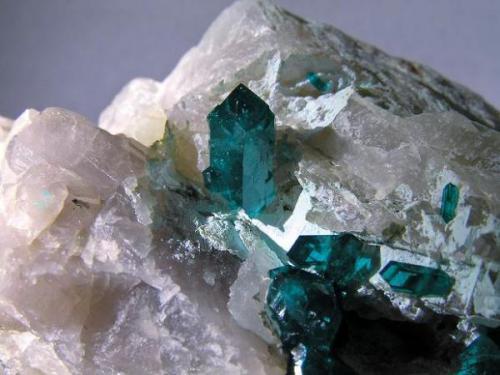 Dioptasa. Kaokoveld, Kaokoland, Namibia. Tamaño de la pieza: 7x5x4.5 cm., cristales hasta 1,1 cm. Col. y foto Nacho Gaspar. (Autor: Nacho)