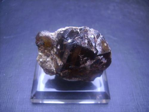 Casiterita sobre matriz. Boticas, Chaves, Portugal. 4,5 x 3,5 cm. El cristal mayor mide 2,2 cm. Con etiqueta manual escaneada de los ex duplicados Folch. (Autor: Antonio Alcaide)