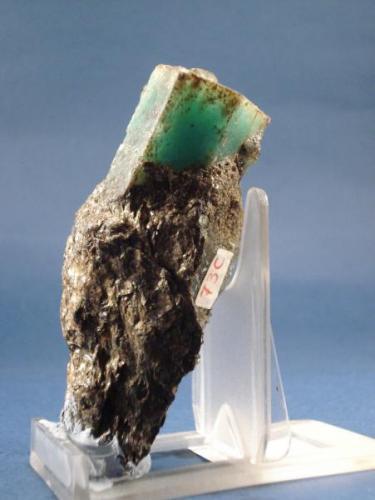 Esmeralda, longitud cristal 5 cm. La Franqueira. (Autor: Echevarria)