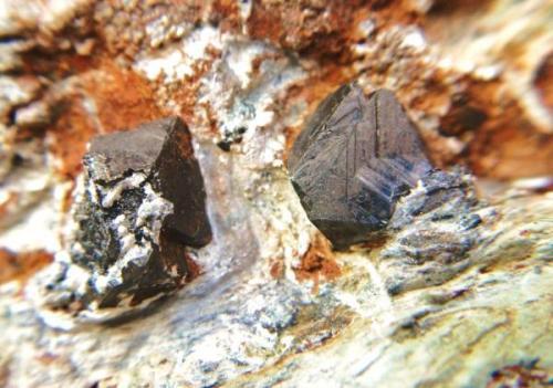 Magnetita<br />Sierra Nevada, Granada, Andalucía, España<br />Cristales 1 cm.<br /> (Autor: Nieves)