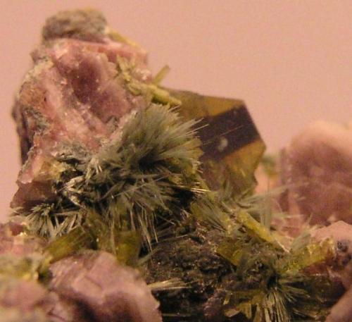 Clinozoisita.  Cantera de Los Arenales, Torás, Castellón, Comunidad Valenciana, España.  Cristales de 5 mm. en epitaxia con epidota, más pumpellyita y oligoclasa. (Autor: Adrian Pesudo)