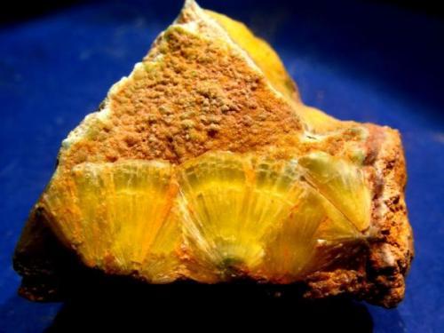 Wavellita<br />Palazuelo de las Cuevas, San Vicente de la Cabeza, Comarca Aliste, Zamora, Castilla y León, España<br />Abanicos de 12 mm.<br /> (Autor: Calita)
