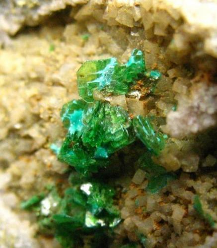 (Meta)Zeunerita<br />Mina La Profunda, Collada de Cármenes, Cármenes, León, Castilla y León, España<br />Grupo de cristales de 8 mm.<br /> (Autor: Calita)