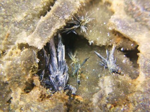 Antimonita<br />Minas de la Nazarena, Almuradiel, Ciudad Real, Castilla-La Mancha, España<br />Cristal más grande 15 mm.<br /> (Autor: Nieves)