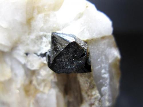 Casiterita sobre cuarzo - Mina San José - Cáceres - Cristal de 0,8 x 0,8 cm. (Autor: Juan C. Agua)