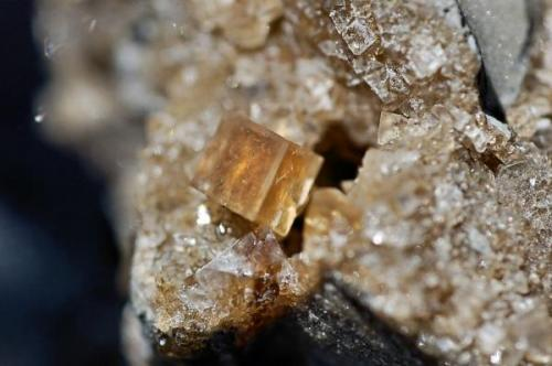 Calcite Wright-McGrady Mine, Karnes Uranium District, Karnes Co., Texas, USA 8mm on edge.  Calcite rhomb (Author: Paul Bordovsky)