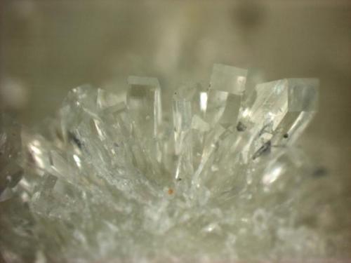 Prehnite Martin Marietta Quarry, Hickory, North Carolina, USA   Taken at 50x, field of view is 2.25 mm wide.  Prehnite (single crystals) (Author: Pete Richards)