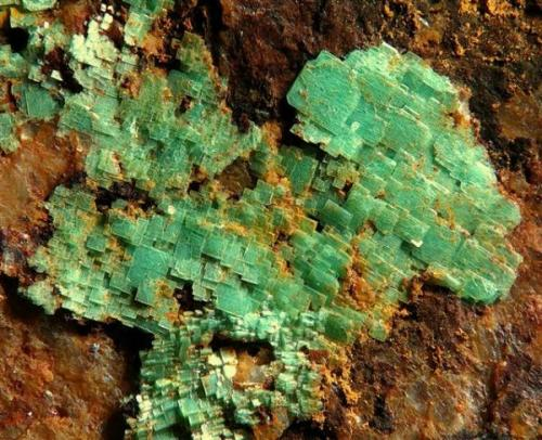 Metazeunerita.  Minas José, Chóvar, Castellón, Comunidad Valenciana,  España  Grupo de cristales de 1,5 cm. (Autor: Adrian Pesudo)