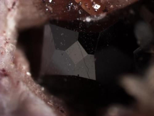 Unusual franklinite crystal with cube and tetrahexahedron {310} faces as well as the octahedron.  Late stage growth in a vug.  Crystal is 0.6 mm wide. (Author: Pete Richards)