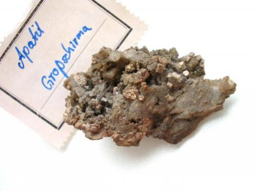 """Pseudoapatite"", a pseudo of apatite after pyromorphite appearing as greyish crystals up to 4 mm on baryte matrix from the Churprinz Friedrich August mine, Großschirma, Freiberg district, Saxony. The more famous German locality for ""pseudoapatites"" is the Lorenz Gegentrum dump, Halsbrücke, Freiberg district, Saxony. With Bergakademie Freiberg label (1930). (Author: Andreas Gerstenberg)"