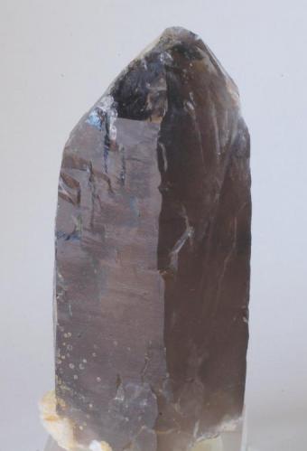 Cuarzo Ahumado - Pedrera Massabé, Sils, La Selva, Girona, Catalunya, España Medidas: 8,5x4,5x4,5 cms (Autor: Joan Martinez Bruguera)