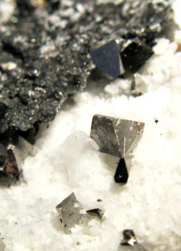 Arsenopirita. Mina de Oro de Carles. Salas. Asturias. Tamaño de la muestra: 4.5x4 cm. Tamaño cristal mayor: 3 mm. (Autor: Jose Luis Otero)