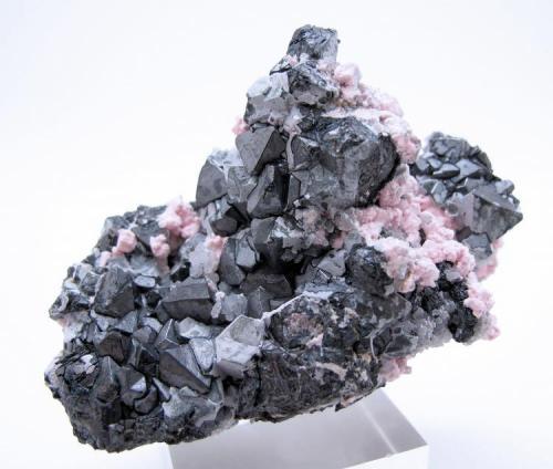 Alabandite, rhodochrosite, quartz Uchucchacua Mine, Oyon, Lima, Peru 84 mm x 58 mm x 45 mm. Major crystal: 13 mm tall, 9 mm on edge (Author: Carles Millan)