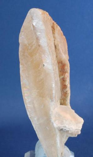 Yeso - Utrillas, Teruel, Aragón, España Medidas: 9 x 3,5 x 2,5 cms (Autor: Joan Martinez Bruguera)