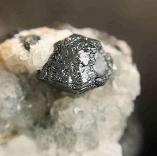 """Calcosina (cristal de 1,1 cm). Mina """"Las Cruces"""", nº 7532-A. TT.mm. de Gerena, Guillena y Salteras. (Sevilla) (Autor: Inma)"""