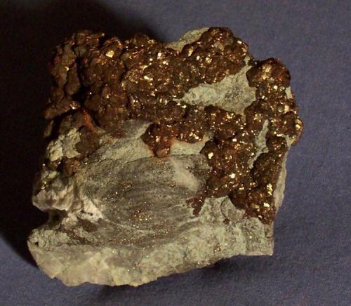 Marcasite Valders Quarry, Manitowoc, Wisconsin, USA 6.5 x 6.5 x 2.5 cm (Author: KDF-TX)