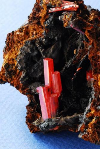 CROCOITA Dundas, Tasmania 8x4 cm (Autor: E. Llorens)