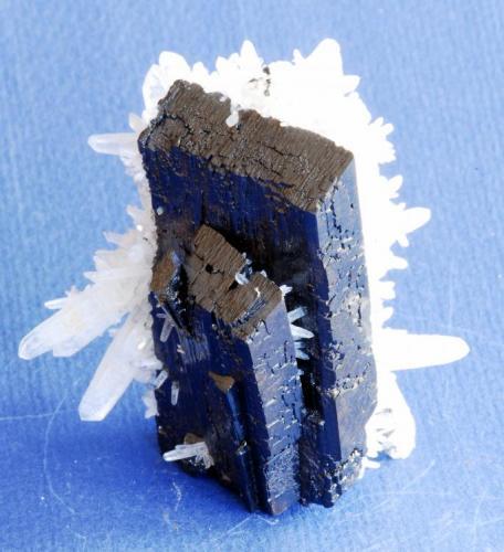Hübnerita Labor Teo, Mundo Nuevo, Perú 6x4 cm Cristal flotante acabado por todo los lados. (Autor: E. Llorens)