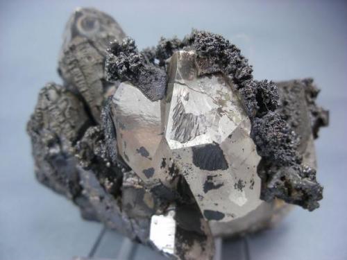Cuarzo (parcialmente recubierto de manganeso). Mina de Soloviejo. El Campillo. Huelva. Pieza: 8 x 6 cm. Cristal mayor: 4 cm. (Autor: Juan Cabezas)