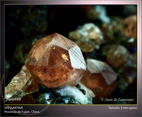 Spessartina (Espesartina).  Provincia de Fujian. China.  Tamaño aproximado de 3 mm. (Autor: Juan de Laureano)
