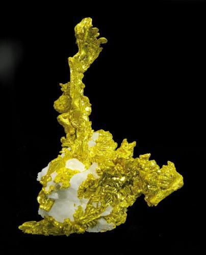 Oro nativo con Cuarzo Mina Eagle's Nest, Placer County, California,USA Tamaño de la pieza: 4 × 3.2 × 1.3 cm. El cristal más grande mide: 2.4 × 0.4 cm. Encontrado en 2003 Foto: Ejemplares de Referencia (Autor: Jordi Fabre)