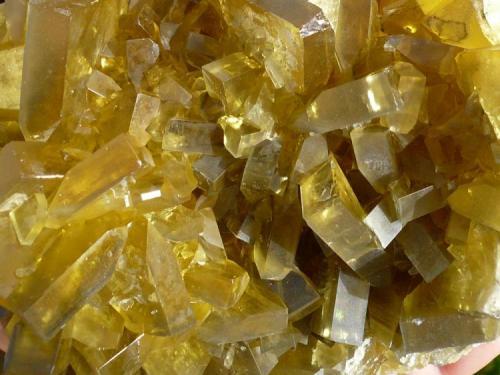 Barita Su Zurfuru Mine, Fluminimaggiore, Carbonia-Iglesias, Sardinia, Italia. 15x11 cm (Autor: nerofis2)