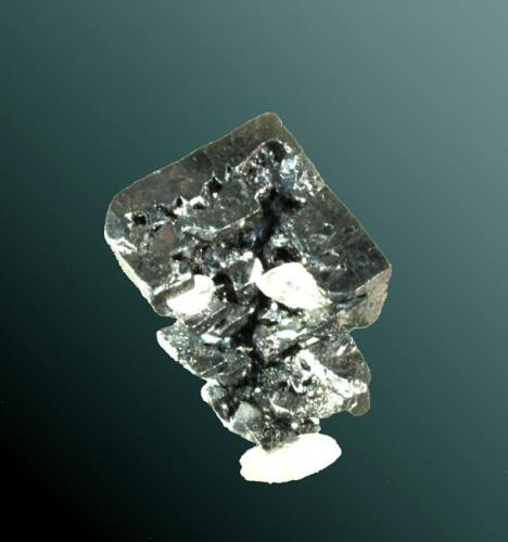 Acantita Guanajuato (municipio), Guanajuato, México. San Carlos (m). Cristal cúbico pseudomórfico de argentita), con crecimientos en tolba en las caras del cubo, con un  cristal escalenoédrico biterminado de calcita.            cristal•lografia: (pseudocúbic) cub {100}            mesures: exemplar= 1,7 x 1,2 x 1,0 cm. / cristall pral.= 1,2 x 1,2 x 0,8 cm. / pes= 003 g.            imatge: acantita_1986_09_2 // MINDAT ID: 303611            notes: Renumerat novembre de 2006. Registre antic 1986.09(2)            procedència:  Kucera Gómez, Enric (Natura Kucera, Barcelona)                Cook, R.B. 2004b / Johnson, P.W. 1963 / Panczner, W. 1987 / Wallace, T.C., Wilson, W.E. 1994 (Autor: Carles Curto)