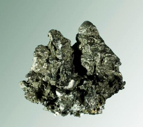 Acantita Schneeberg, Erzgebirge, Chemnitz, Sachsen, Alemania. Agregados uniaxiales de cristales bipiramidales aplanados. 2,9 x 3,2 x 1,3 cm. (Autor: Carles Curto)