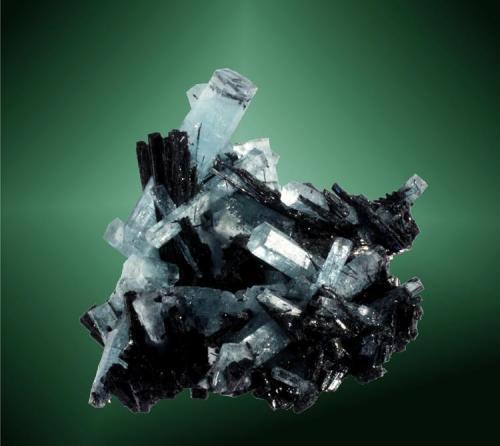 Berilo (aguamarina) + chorlo Usakos, Walvis Bay (constituencia), Erongo (región), Namibia. Davib Ost. Cristale prismático, muchos de ellos biterminados, de color azul celeste, con cristales aciculares de chorl (ejemplar de 2009). 4,5 x 5,1 x 4,1 cm. / cristal pral.: 3,4 x 0,6 x 0,7 cm. (Autor: Carles Curto)